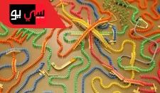 84,790 Dominoes - Biggest Spiral Ever Made!